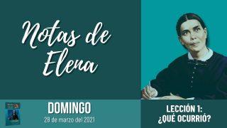 Notas de Elena | Domingo 28 de marzo del 2021 | Tortugas hasta el fondo… | Escuela Sabática